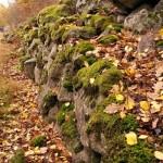 Almhult, meditatie despre pietre