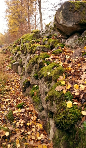 swedish wall